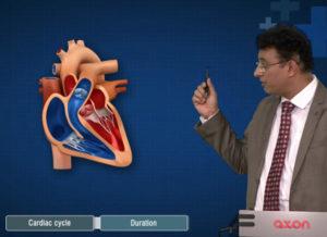 AXON-Cardiovascular-Disease
